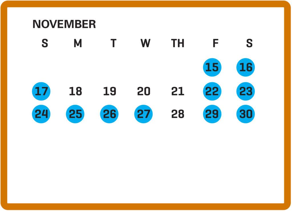 Dallas Zoo Lights November calendar