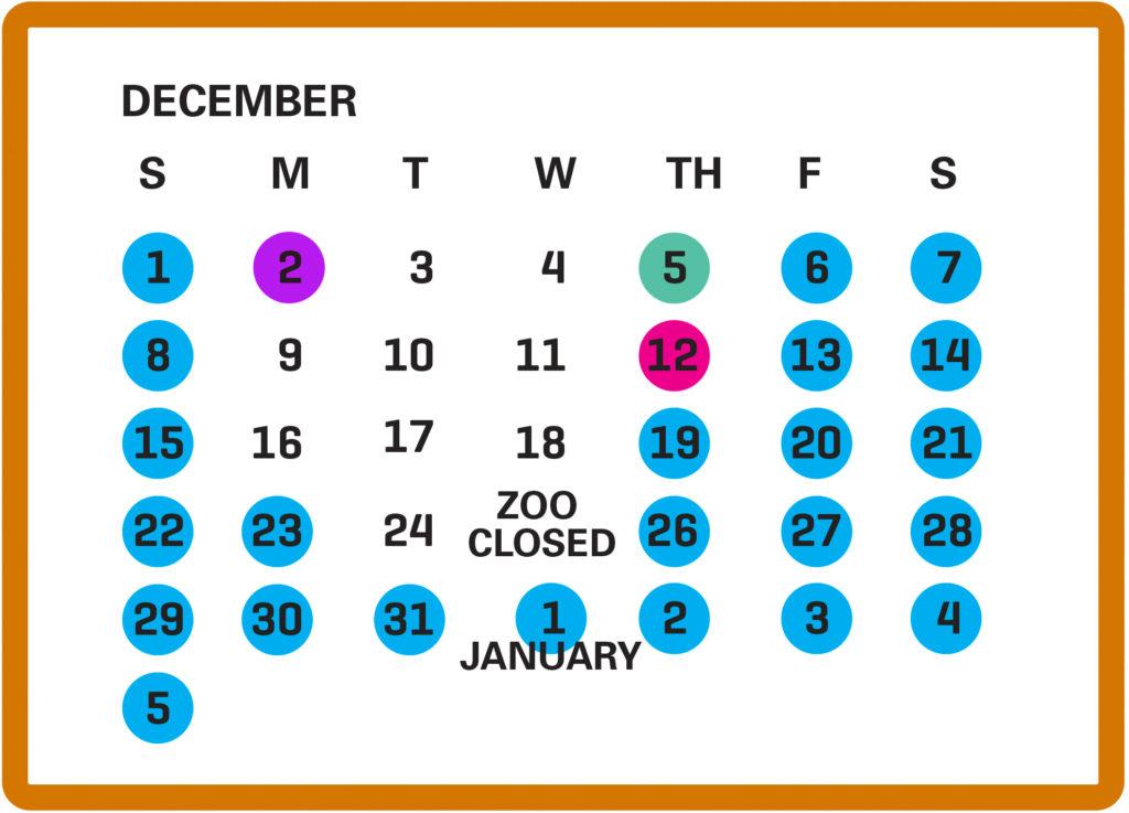 Dallas Zoo Lights December calendar